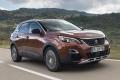 Ľudia chcú malé SUV-čka. Prečo je autom roka francúzsky crossover?