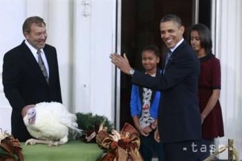 Obama dnes udelí milosť moriakom menom Cobbler a Gobbler