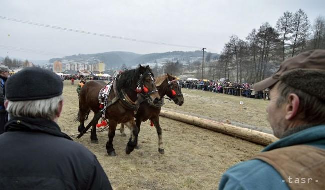 Zimná súťaž furmanov prilákala asi 2500 návštevníkov - 24hod.sk