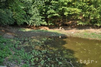 Dobrovoľníci vybudujú v Košickom kraji 30 dažďových záhrad a jazierok