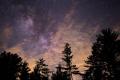 Je to pravda, že je na Zemi viac stromov ako hviezd na nebi?
