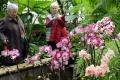 Botanická záhrada v Tatranskej Lomnici je dočasne zatvorená