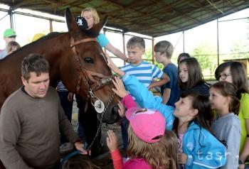 Na športovom tábore si deti vyskúšajú lezenie i jazdu na koni