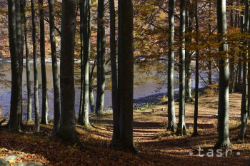 Les a ochranu prírody predstavuje výstava v Kysuckom múzeu