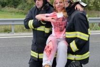 Nehoda, simulácia