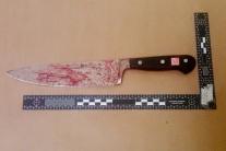 V penzióne v Radvani zavraždili 28-ročnú ženu, dobodali ju 59 ranami