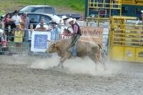 V Muráni kovboji predvádzali umenie jazdou na býko