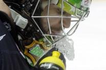 MS 2012 v hokeji