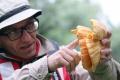Liečivé huby najviac využívajú v Číne, ale rovnaké rastú aj u nás