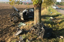 TRAGÉDIA pri Chtelnici: Autu skrížila cestu srna, skončilo to tragicky
