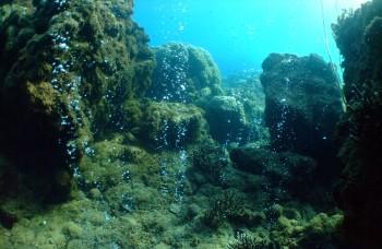 Virtuálne potápanie od Google vám odhalí krásy spod hladiny mora