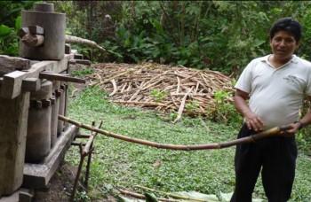 Ako odšťavovať ekologicky na drevenom odšťavovači