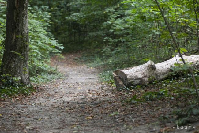 Na Slovensku by mali vzniknúť štyri chránené areály