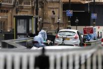 Do zábran pred parlamentom v Londýne narazilo auto