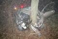 Po náraze auta do stromu sa zranili dvaja ľudia, hrozil požiar