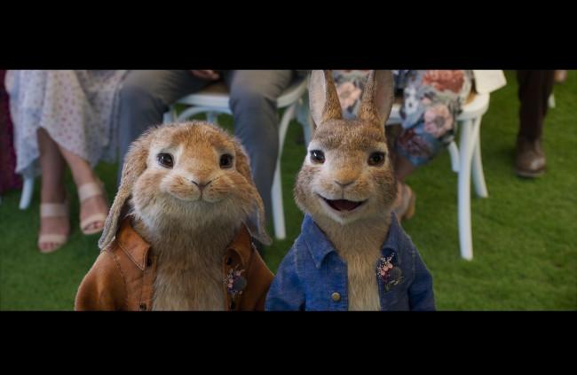 Králik Peter na úteku: Rebelský králik sa vracia v prvom traileri