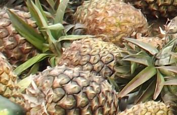 Päť dôvodov, prečo by ste mali piť ananásovú šťavu