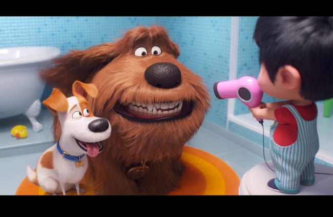 ca8705b69 Tajný život maznáčikov 2(The Secret Life of Pets 2) Foto: CinemArt