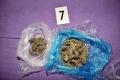 V Mníchove súdia drogových kuriérov prepravujúcich marihuanu