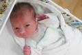 Dojčenie je podľa pediatrov základným kameňom zdravia matiek a detí
