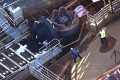 VIDEO: Pri nehode v austrálskom zábavnom parku zahynuli štyria ľudia