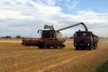 Tento rok je úroda poľnohospodárskych plodín na Slovensku nižšia
