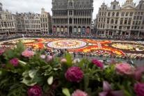 Kvetinový koberec v Bruseli