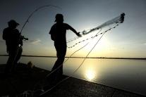 Svetový deň rybárstva