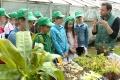 ZŠ Energetikov v Prievidzi chce používať záhradu ako učebnú pomôcku