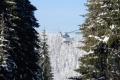 Ťažký sneh na stromoch pri hranici s Poľskom pomáhal zhodiť vrtuľník