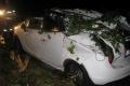 Ďalší opilec za volantom: Skolil rozvodnú skriňu, potom aj strom