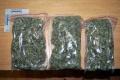 Štrnásťročný žiak základnej školy predával spolužiakom marihuanu