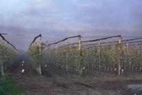 Slovensko Veselé príroda zima pôdohospodárstvo TTX
