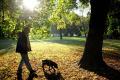 Bratislava spísala základné pravidlá pre psičkárov