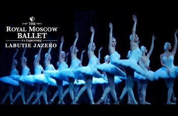 Baletné predstavenie Labutie jazero patrí k najvyhľadávanejším titulom