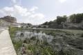 Taliansko bojuje so suchom, ´zelené pľúca´ Ríma opäť horia