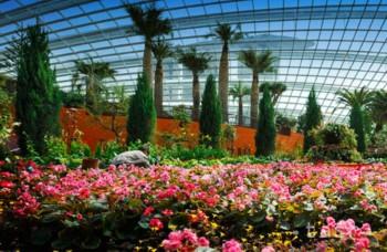 Singapur chce byť rajom na Zemi