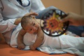 Českí vedci objavili prvú látku účinnú proti vírusu zika