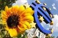 Zásobovanie bánk v eurozóne peniazmi aj rast úverov v júli spomalili