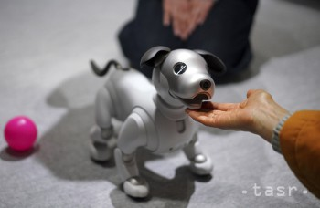 VIDEO: Robotický pes Aibo už má svojho majiteľa