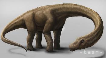 V Argentíne sa našli  kostrové pozostatky dosiaľ najväčšieho dinosaura