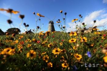 Zvyšovanie počtu druhov rastlín na horských vrcholoch sa zrýchľuje