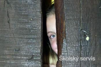 Dvadsiaty piaty máj je dňom, keď si ľudia pripomínajú nezvestné deti