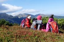 Západné Tatry turistika turisti hory príroda les t