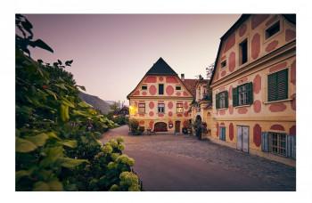V Dolnom Rakúsku si vo víne vychutnáte kombináciu tradície a inovácií