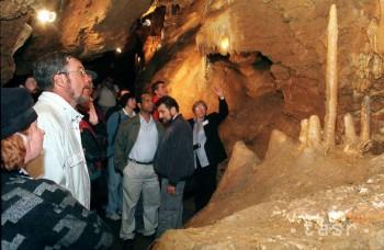 Jaskyňa Driny je jedinečná výskytom 11 druhov netopierov