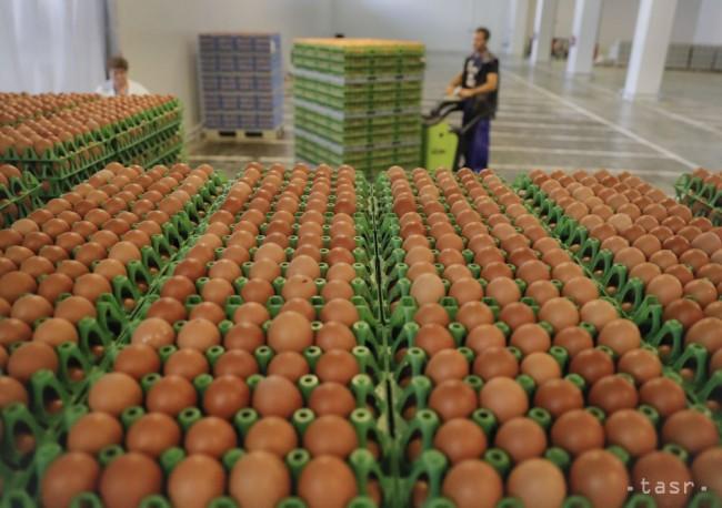 Kauza fipronilových vajec vyústila do memoranda pre všetky krajiny EÚ