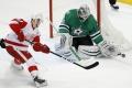 NHL: Hokejisti Detroitu vyhrali nad Minnesotou po predĺžení