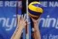 Slovenskí volejbalisti potvrdili úlohu favorita výhrou s Luxemburskom