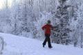 Košičania chodia najradšej behávať do lesoparku v časti Furča